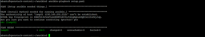 ansible-output-2